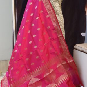 Banarasi Jacquard Fabric with Benarasi Figure weave Mirror work Dupatta